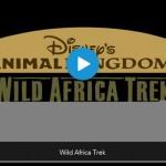 Wild Africa Trek Video